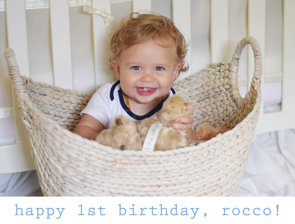 happy 1st birthday to our rocco!!