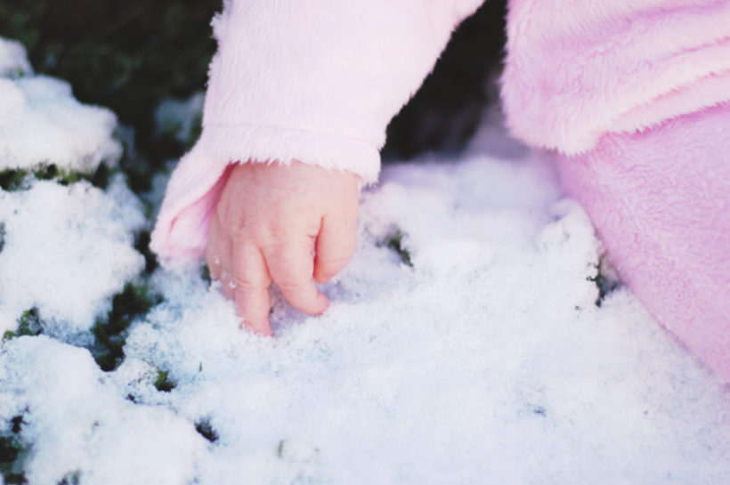it snowed! it snowed!