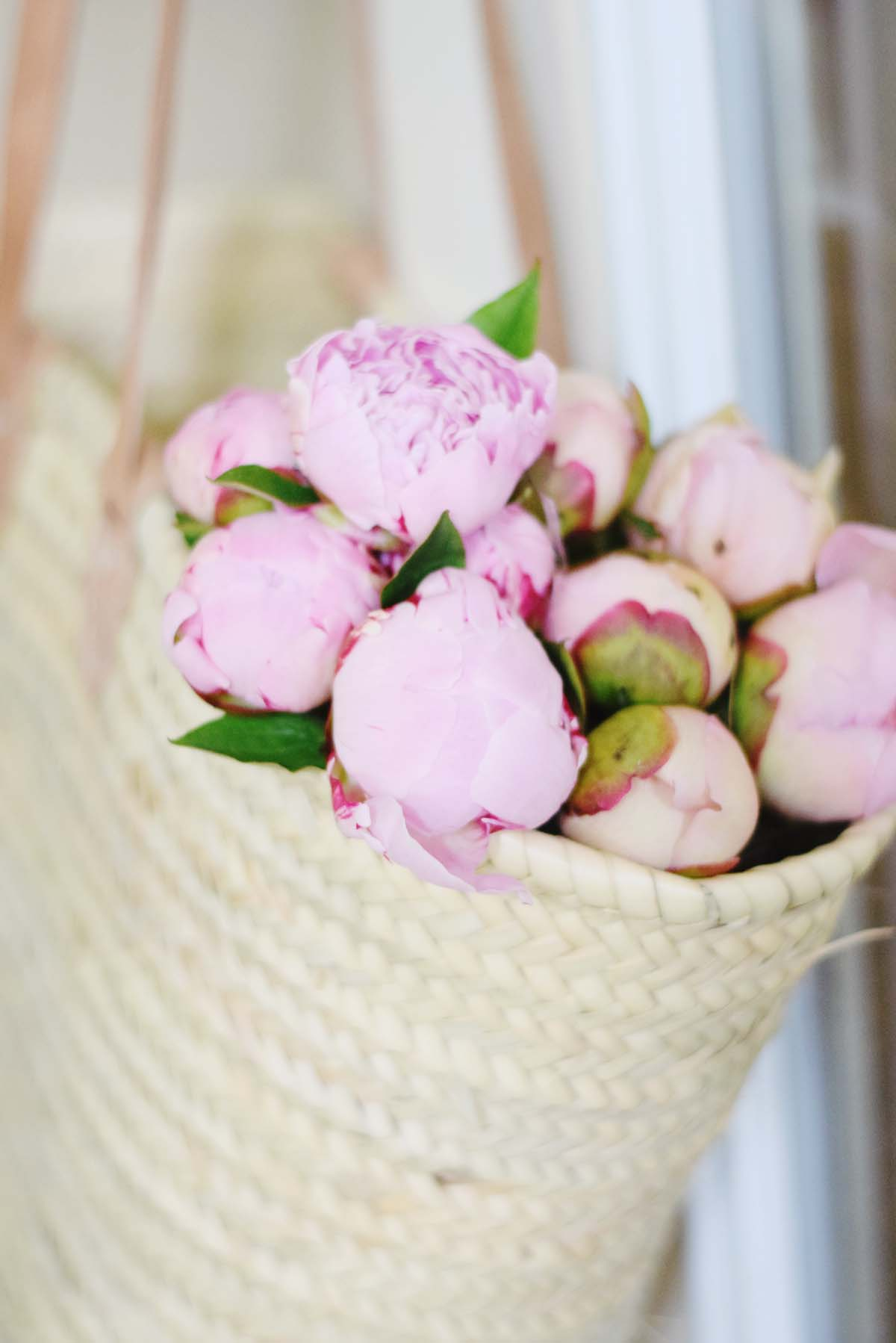the prettiest peonies!