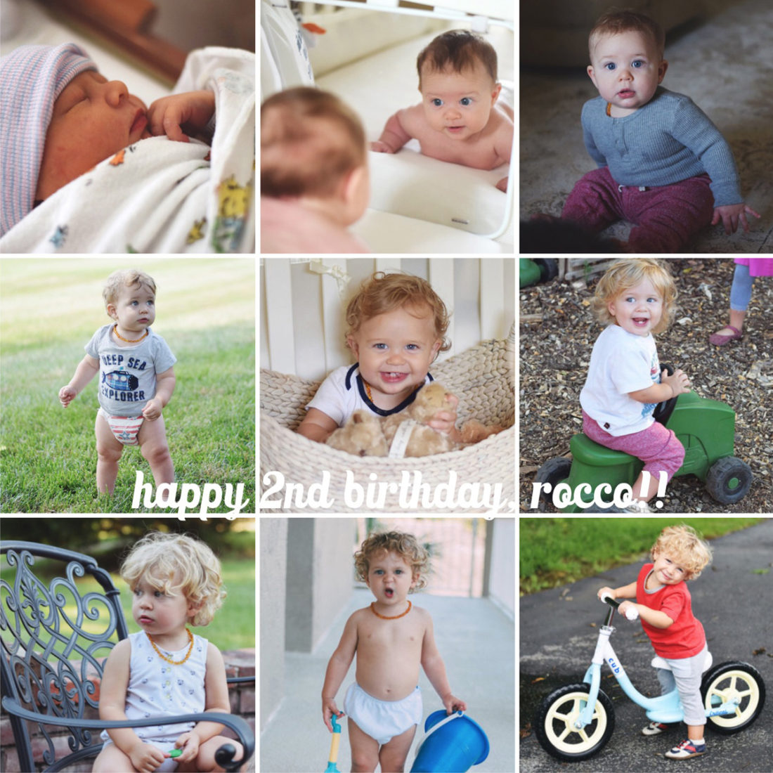 happy 2nd birthday, rocco!!!